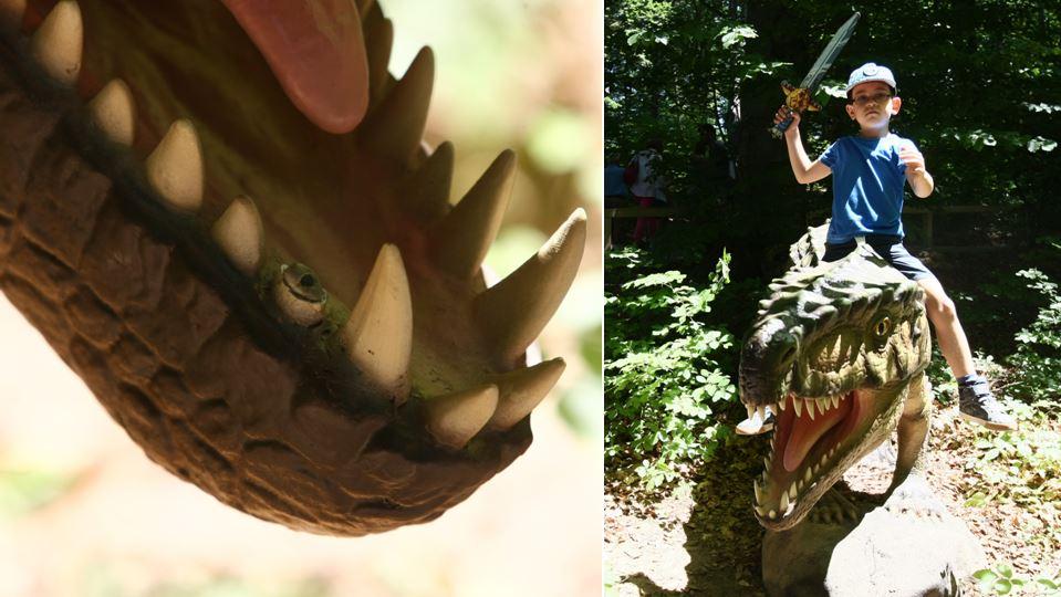 Acest dinozaur a rămas fără un dinte. O fi trecut pe la stomatolog.