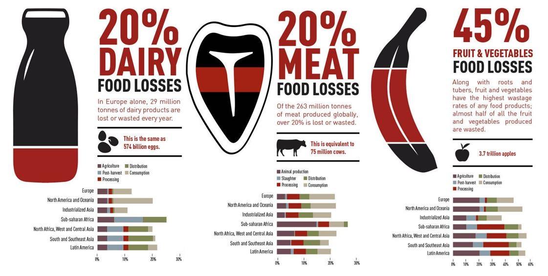 Iată o situație a risipei alimentare la nivel european